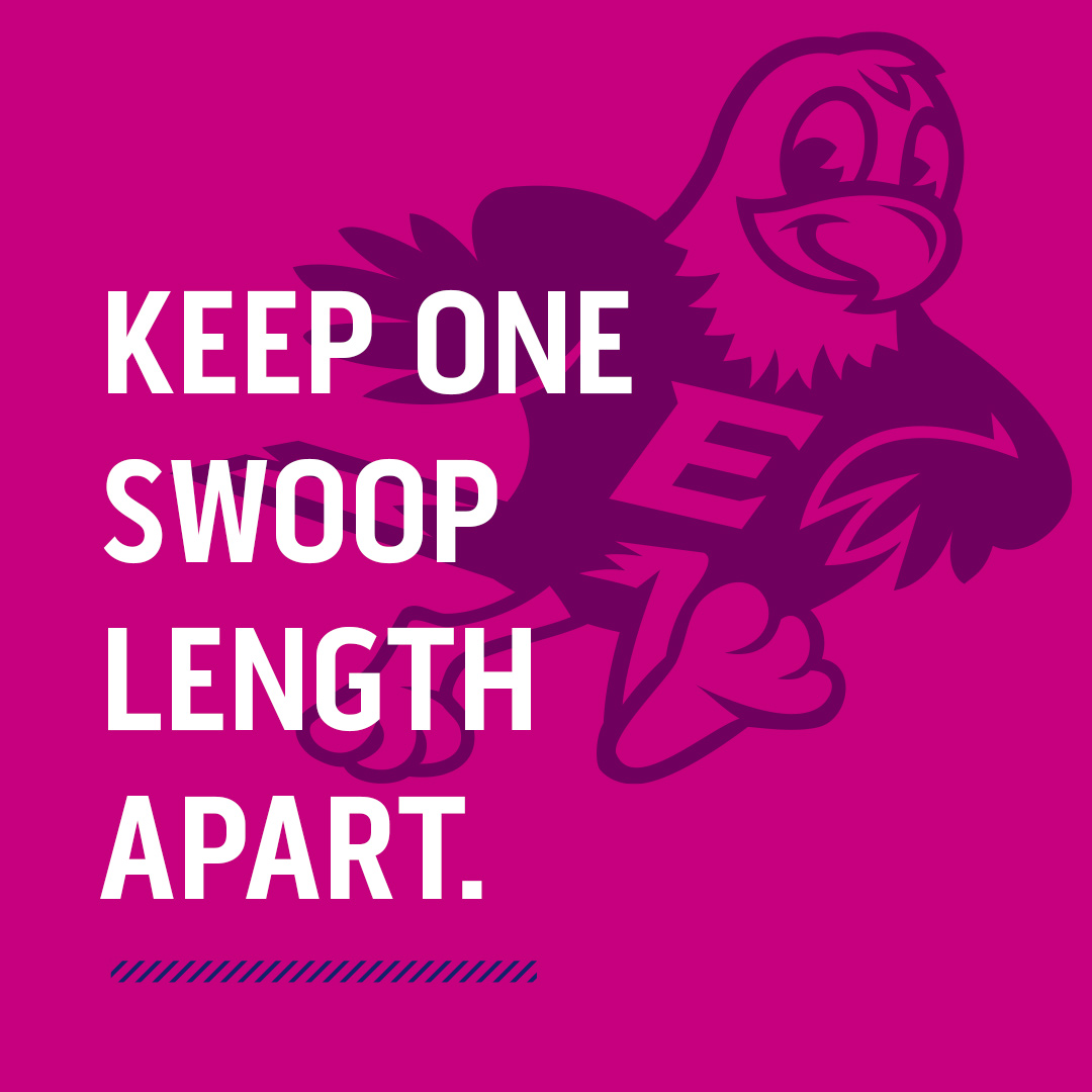 illustration of Swoop mascot on magenta background with words one swoop apart