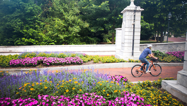 student riding bike onto campus