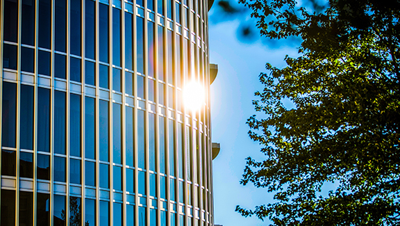 glass building with sun flare